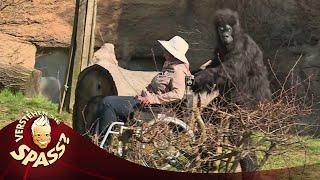 Die hat's verdient: Irene Erhardt - Im Zoo | Verstehen Sie Spaß?