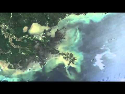 BP Oil Spill Summary