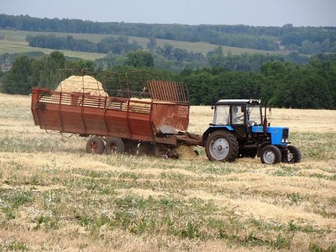 видео: tractor mtz-82.1 with pickuptp-f-45 /// Трактор МТЗ-82.1 с подборщиком ТП-Ф-45 на подборе соломы