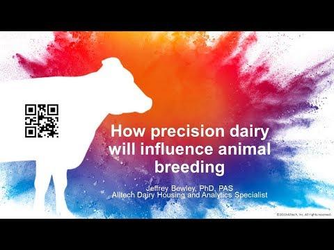 How Precision Dairy Will Influence Animal Breeding - Jeffrey Bewley, Alltech