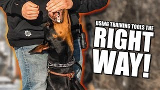 How to use E collar and prong collars properly - Dog training with Americas Canine Educator