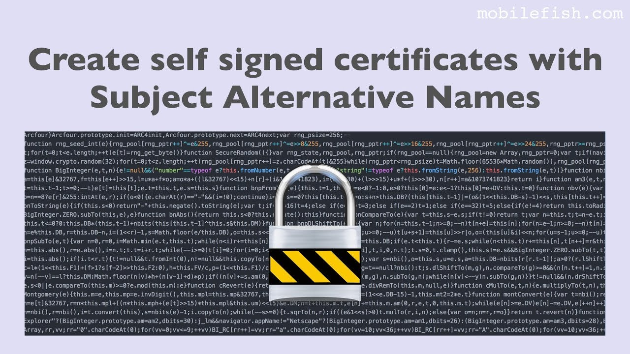 Create Self Signed Certificates With Subject Alternative Names Youtube