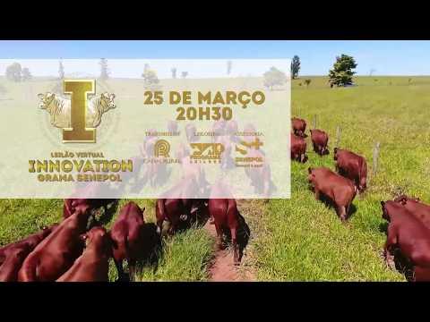 LEILÃO VIRTUAL INNOVATION GRAMA SENEPOL - Convite