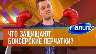 Галилео 🥊 Что защищают боксёрские перчатки?