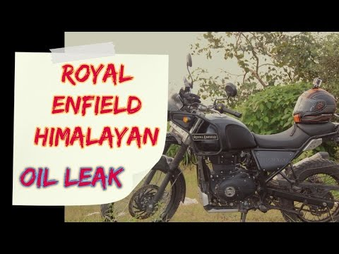 My Royal Enfield Himalayan | Leaking Oil