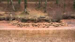 vidange étang du Coucou 24 Hautefort