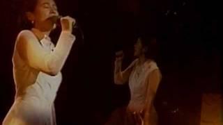 afropia night '91 日清パワーステーション 1991年9月26日.