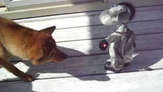 ロバのおもちゃに怯える蓮と桔梗.