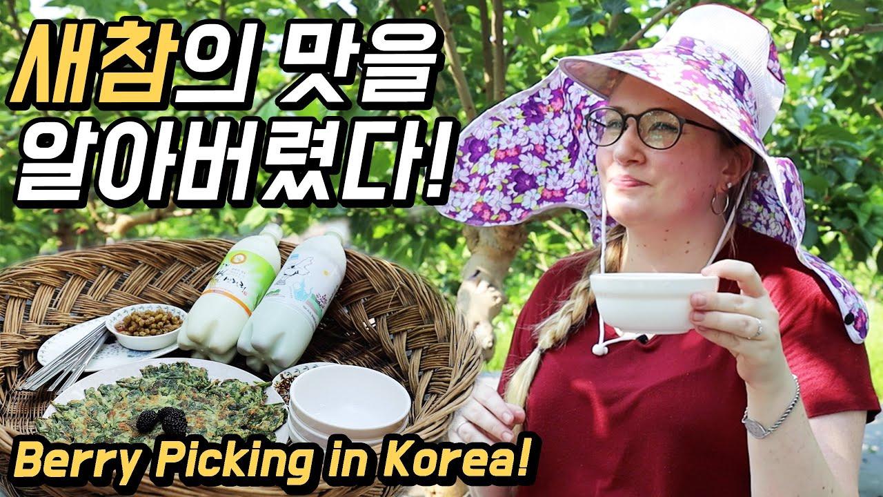 한국의 새참을 처음 먹어본 외국인 반응! 만두랑 뽕따러 가자~ [6시 니고향]