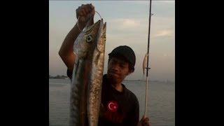 mancing casting barracuda di dermaga aspalindo, sriboga pelabuhan semarang 2