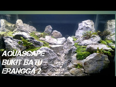 membuat-aquascape-bukit-batu-erangga(part2)
