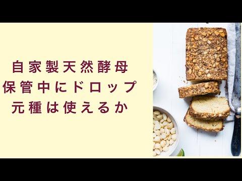【自家製天然酵母】これって使える?完成した元種がドロップした場合 フルーツ酵母 自家製天然酵母 パン教室 教室開業 大阪 奈良 東京 福岡 名古屋