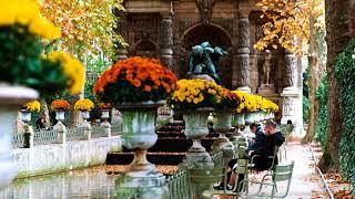 Французский шансон...   Париж...  Осень ...