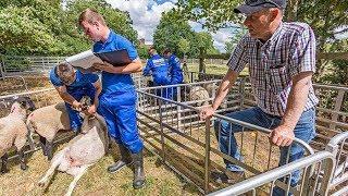 Farmers Apprentice 2018 Episode 3 | Driving Perfection