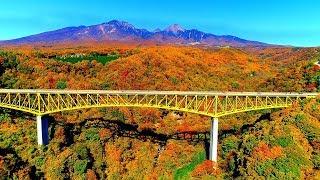 "Whereas the Higashizawa Ohashi is known as the ""red bridge"" The Yat..."