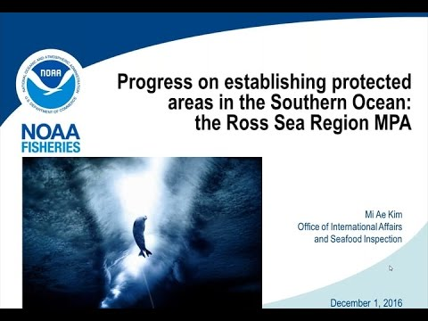 Progress on establishing protected areas in the Southern Ocean: the Ross Sea region MPA