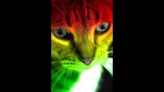 Set - Victor Ruiz ( DJ Gabriel Maurilio Remix )