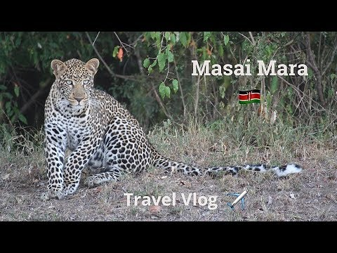 Travel Vlog #2 - Masai Mara