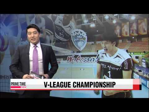 V-League: Samsung Hwajae vs. OK Savings Bank   삼성화재 vs. OK저축은행
