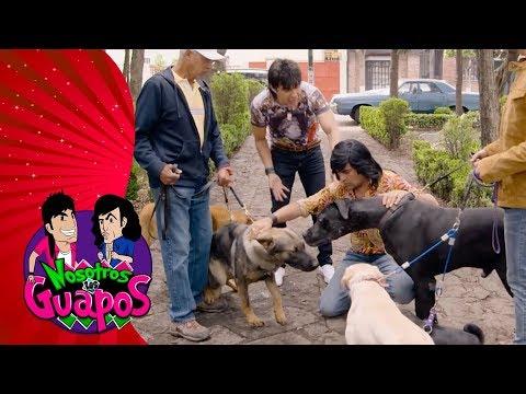 Capítulo 2: Albertano ¿el nuevo Encantador de Perros? | Nosotros los guapos T3
