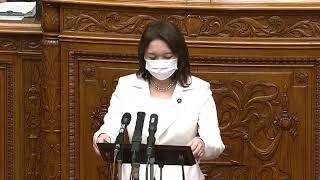 参議院本会議・法務委員長報告(2020/4/17)