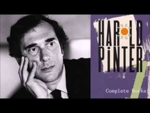 Story in Brief (cc English UK) The Birthday Party by Harold Pinter