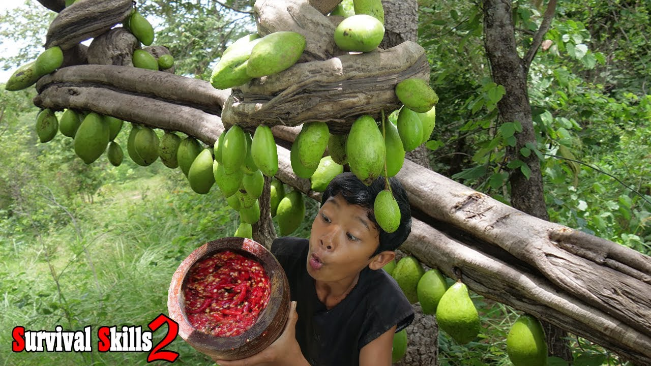 Survival Skills - Find food meets the rich mango fruit Eating delicious Ep107