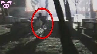 Scary Creatures Caught on Camera