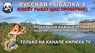 Русская Рыбалка 4 Клюёт рыба Щас проверим Розыгрыши