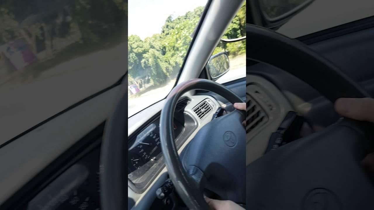Serpiente en el cap� del coche