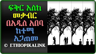 Love Beyond The Grave In Addis  ETHIOPIKALINK