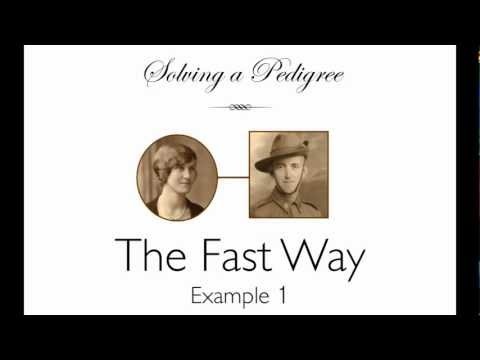 Solving a Pedigree - the Fast Way (example 1)