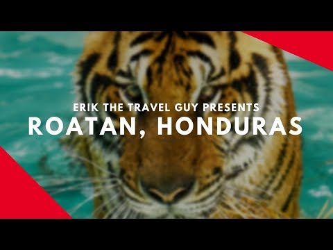 Roatan, Honduras | Vacation Travel Video Guide