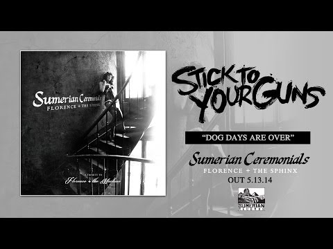 STICK TO YOUR GUNS - Dog Days Are Over