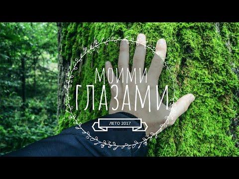 Моими глазами - лето 2017 | Финский залив | Природа | СПБ | Сертолово | HANDIE