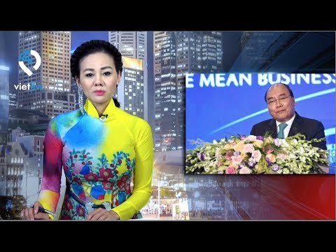 CHIM KHÔNG ĐẬU