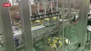 CASE PACKER PL-60 for Instant Noodles Meal