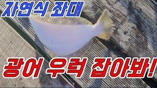 [갑프로] 바다 낚시 자연식 좌대 광어 우럭 편하게 낚…