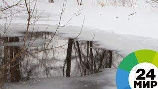 К паводкам готовы: рекам в Казахстане не дадут разлиться - МИР 24