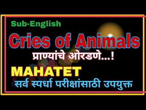 Mahatetमहाटेट|Cries Of Animals|प्राण्यांचे ओरडणे|सर्व स्पर्धा परीक्षांसाठी उपयुक्त|Phadake Academy