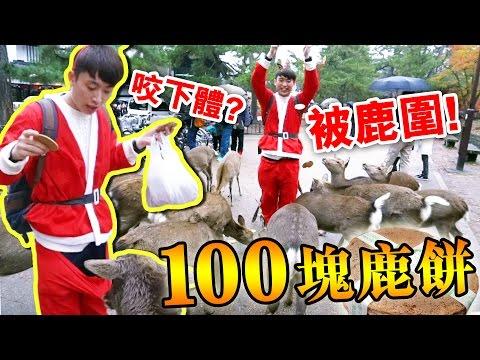 「拿100塊鹿餅」被奈良鹿圍攻的聖誕老人!