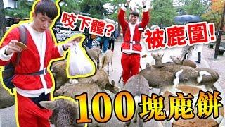 「拿100塊鹿餅」被奈良鹿圍攻的聖誕老人! thumbnail