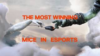 The Most Winning Mice in Esports