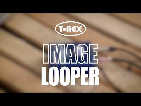 T-REX IMAGE LOOPER demo