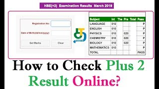 TN 12th +2 Result 2019 - How to Check Plus 2 Result Online @ www.tnresults.nic.in