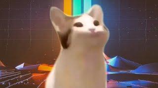 Imagine Dragons - Believer - Cat Pop Cover
