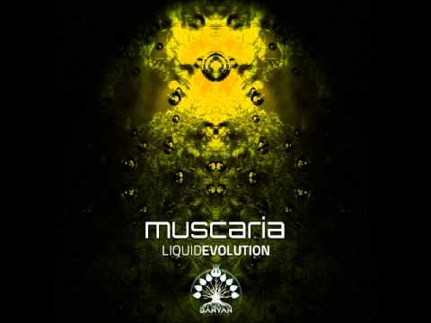 Download Muscaria - Wrong Side Of The Mirror