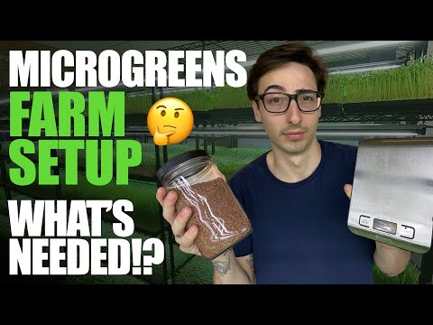 WATCH OR DOWNLOAD: Microgreens Farm Setup: What's Needed?!