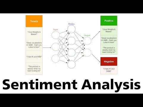 5. Sentiment Analysis (2019)