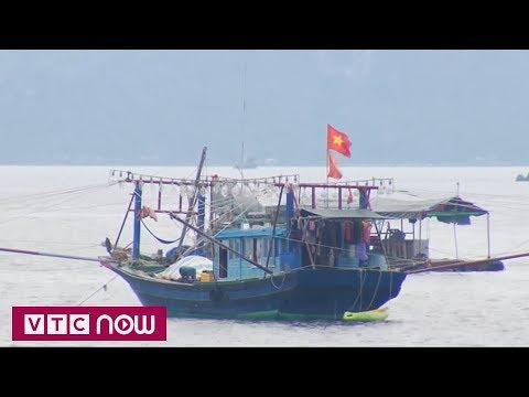 Quảng Ninh sẵn sàng đối phó siêu bão | VTC1